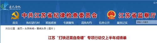 """江苏""""打铁还需自身硬""""行动半年问责人数增62%"""