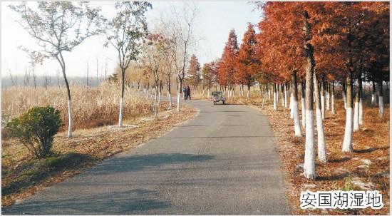 邂逅冬天的大美沛县:文化旅游成经济增长点